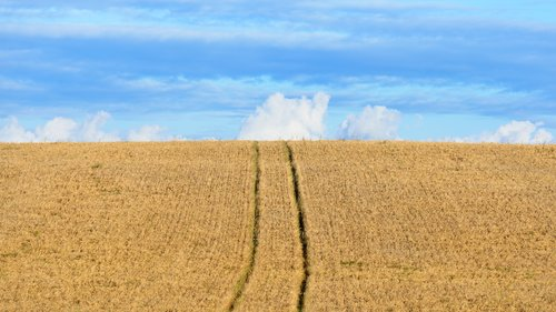 Vyňatie pozemku z pôdneho fondu a oslobodenie od platenia odvodov